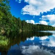 Northern lake in a forest — Stock Photo