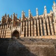 Cathedral of Palma de Majorca — Stock fotografie