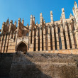Cathedral of Palma de Majorca — Stock Photo