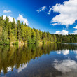 Wild forrest lake sky — Stock Photo #13980981