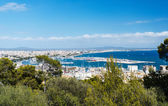 Aerial view of Palma de Mallorca in Majorca Balearic islands — Stock Photo