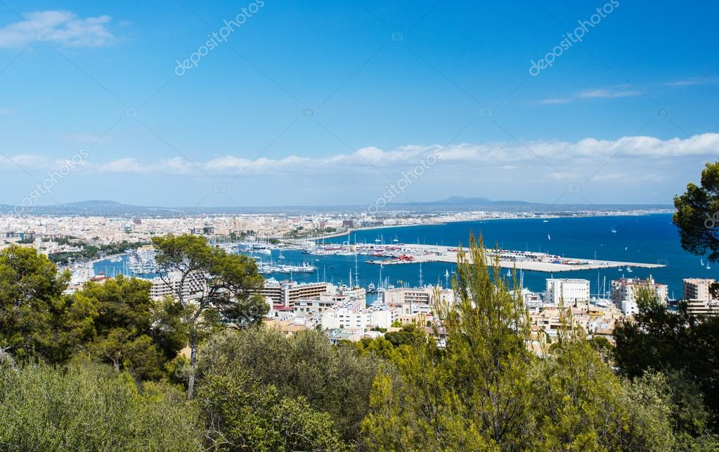 Aerial view of Palma de Mallorca in Majorca Balearic islands Spain  Stock Photo #13980056