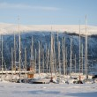 Marina in Tromso, Norway — Stock Photo