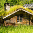 Norwegian typical grass roof country house — Stock Photo #15757255
