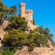 Stock Photo: Castle Sant Joan