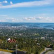Panoramic view on downtown Oslo Norway — Foto de stock #16488865