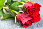 Red roses on a cloth — Stock Photo
