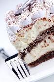 Tiramisu cake with fork — Stock Photo
