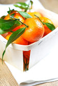 Satsuma on table cloth — Stock Photo