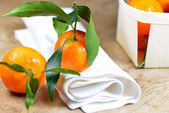 Set of satsuma on wooden table with napkin — Stock Photo