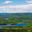 Norway forest and lakes — Stock Photo