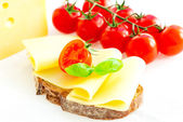 Sandwich with cheese and tomatoes — Stock Photo