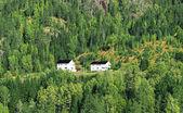 Farmhouses on hillside — Stock Photo