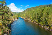 Mountain river in Norway — Stock Photo