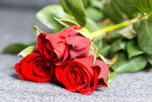 Roses on grave — Stock Photo