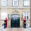 Постер, плакат: Danish Royal Life Guard posted at Amalienborg Palace in Copenhag