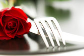 Composition of rose knife fork on plate — Stock Photo