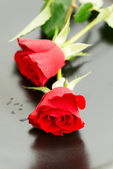 Two Red roses on plate top view — Stock Photo