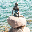 The Little Mermaid of Copenhagen Denmark — Stock Photo