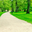 Pathway in city garden — Stock Photo