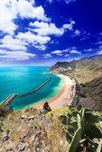 Playa de Las Teresitas general view vertical — Stockfoto