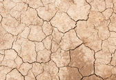 Cracked Land Texture — Stock Photo