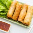 Thai Spring Roll — Stock Photo