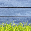 Stock Photo: Old Wood Wall And Green Grass