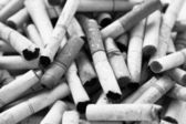 Cigarette Butts Black And White — Stock Photo