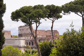 コロシアム パラティーノの丘からの眺め。ローマ、イタリア — ストック写真