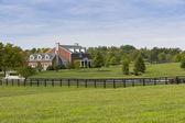 Country Scenery — Stock Photo