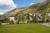 Autumn colors in Colorado. — Stock Photo