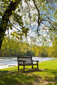 Bench near pond — Stock Photo