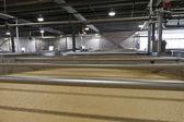 Puré de maíz de borbón en la destilería de la fermentación — Foto de Stock
