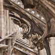 Details of Duomo Cathedral in Milan, Italy — Stock Photo #13697790
