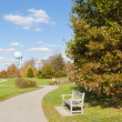 Bench and curve path in city park in autumn — Stock Photo #14596649