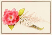 Rose on linen texture. vintage card concept. — Stock Photo