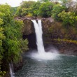 Rainbow Falls in a rainforest on Hawaii, Big Island, USA — Stock Photo
