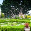 Stock Photo: Alcazar Gardens in BalboPark, SDiego.