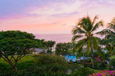 View of ocean tropical resort with lush garden after sunset. — Stock Photo