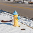 Yellow fire hydrant in an american city setting at winter — Stock Photo #18425239