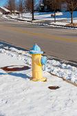 在美国的城市设置在冬季黄色消防栓 — 图库照片