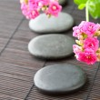 Stones path with flowers for zen spa background, horizontal. sel - Stock Photo