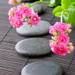Stones path with flowers for zen spa background, vertical. selec - Stock Photo