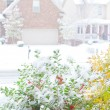 Stock Photo: Snowfall on street in americtown, view from front porch.