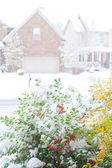 Snowfall on a street in an american town, view from front porch. — Stock Photo