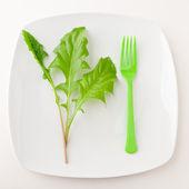 Konzept der gesunden Ernährung oder Diät. — Stockfoto