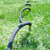 Close up of garden hose in grass, selective focus, shallow dof — Stock Photo
