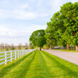 Country road - Foto de Stock
