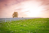 Dramatic sunset sky at country site. — Stock Photo